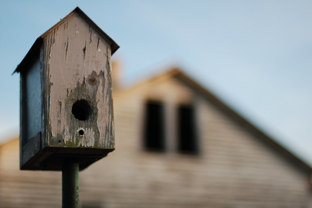 Image of a peeling birdhouse with a house behind it.